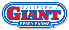 California Giant Berry Farms